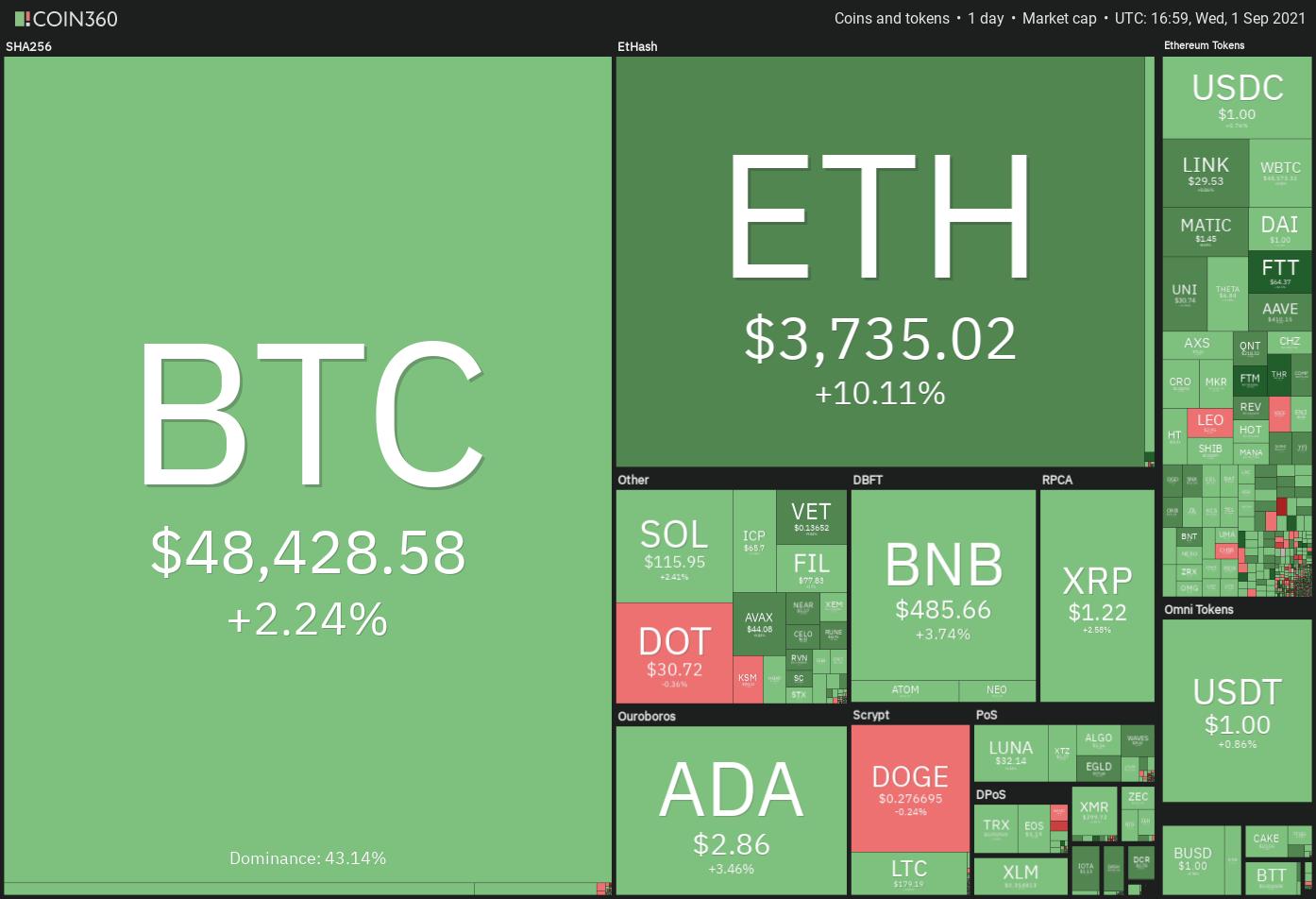 Bitcoin? Più che la valuta del futuro, è solo il luna park di Elon Musk