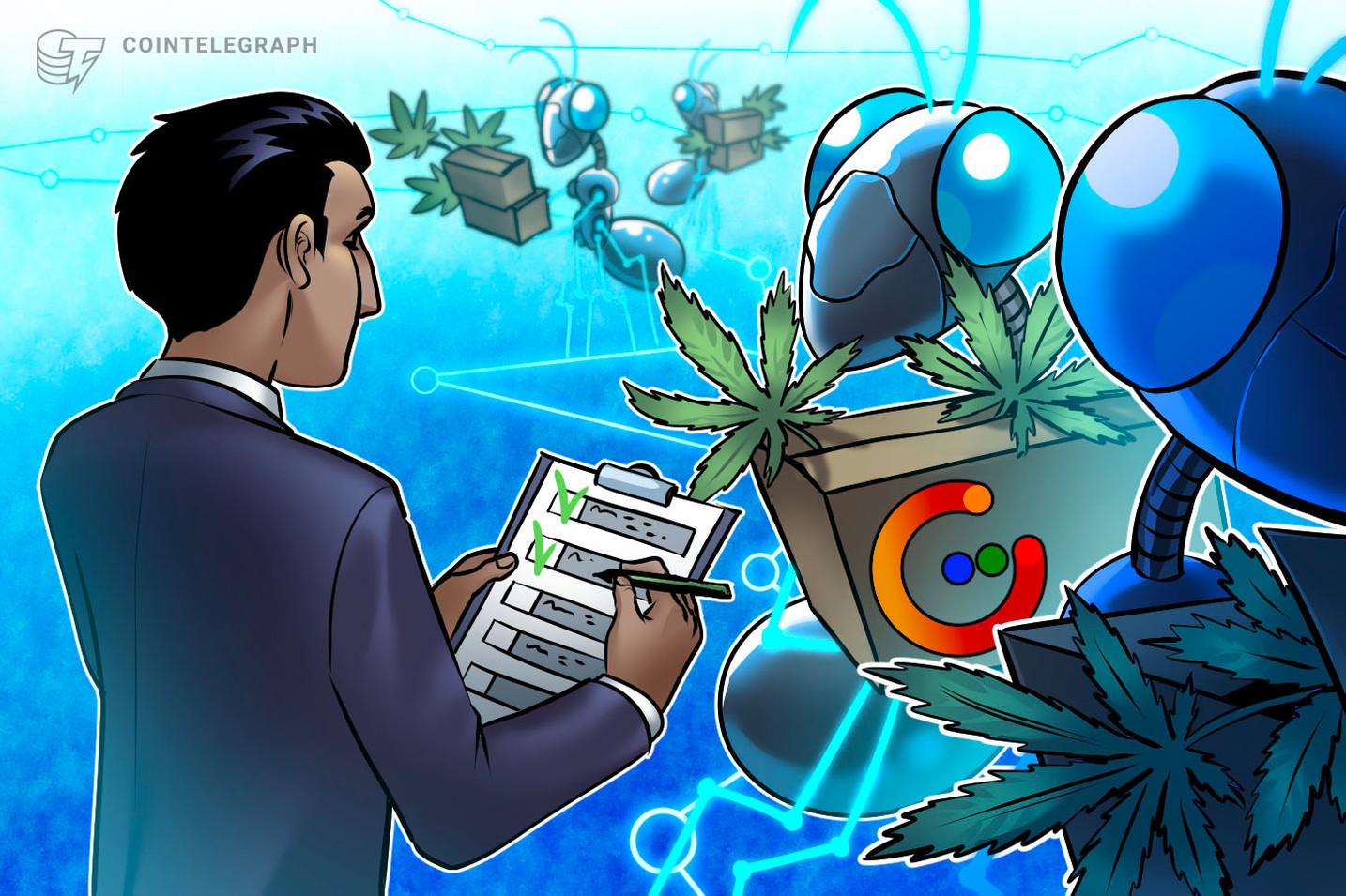 """Ar """"blockchain"""" gali suteikti finansavimą ir įrodymą, kad reikia CBD verslo?"""