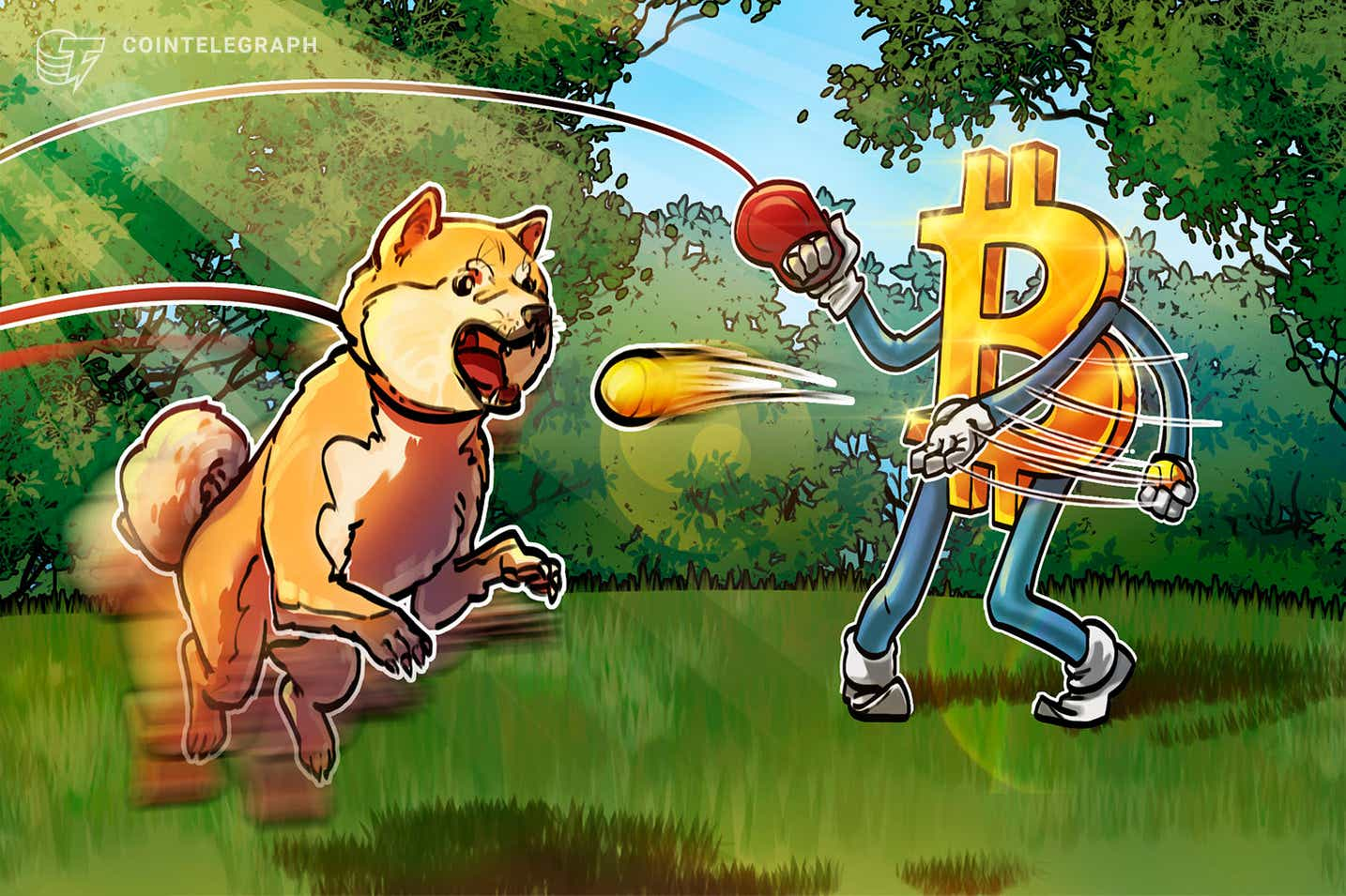 Dogecoin gubi 70% u odnosu na Bitcoin tijekom 6 mjeseci priznanja DOGE -a poznatih osoba